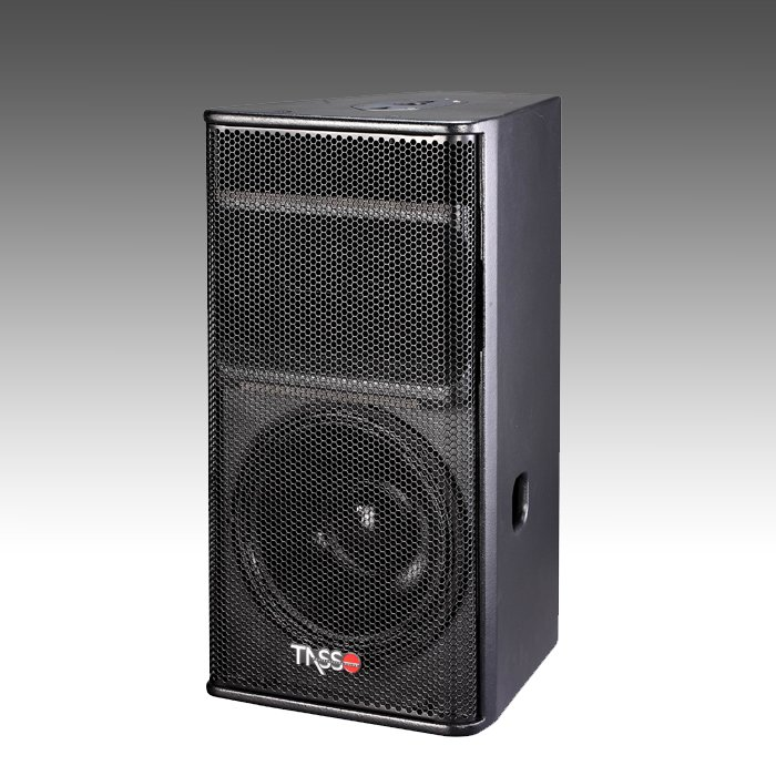 Club Sound Speaker RX123