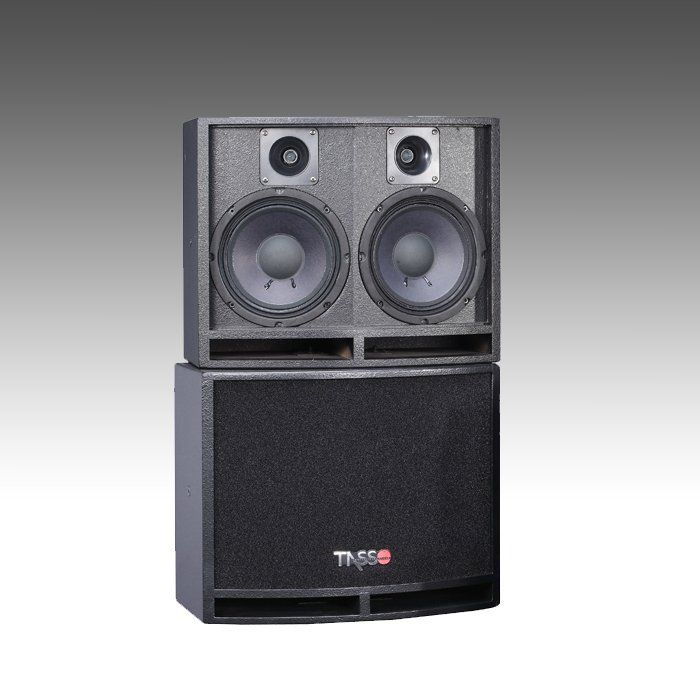 CS804 Karaoke Sound Speaker